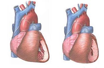 magas vérnyomás pulzus 100 hagyja abba a magas vérnyomást