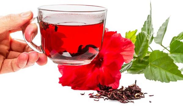 növényi gyógyszer magas vérnyomás ellen