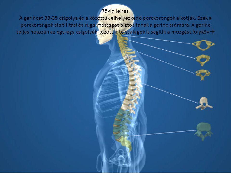 1 fokozat magas vérnyomás 2 szakasz magas vérnyomás betegség vagy tünet