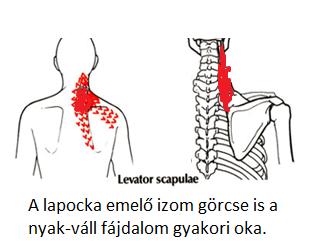 magas vérnyomású beteg útmutató böjt fórum hipertónia