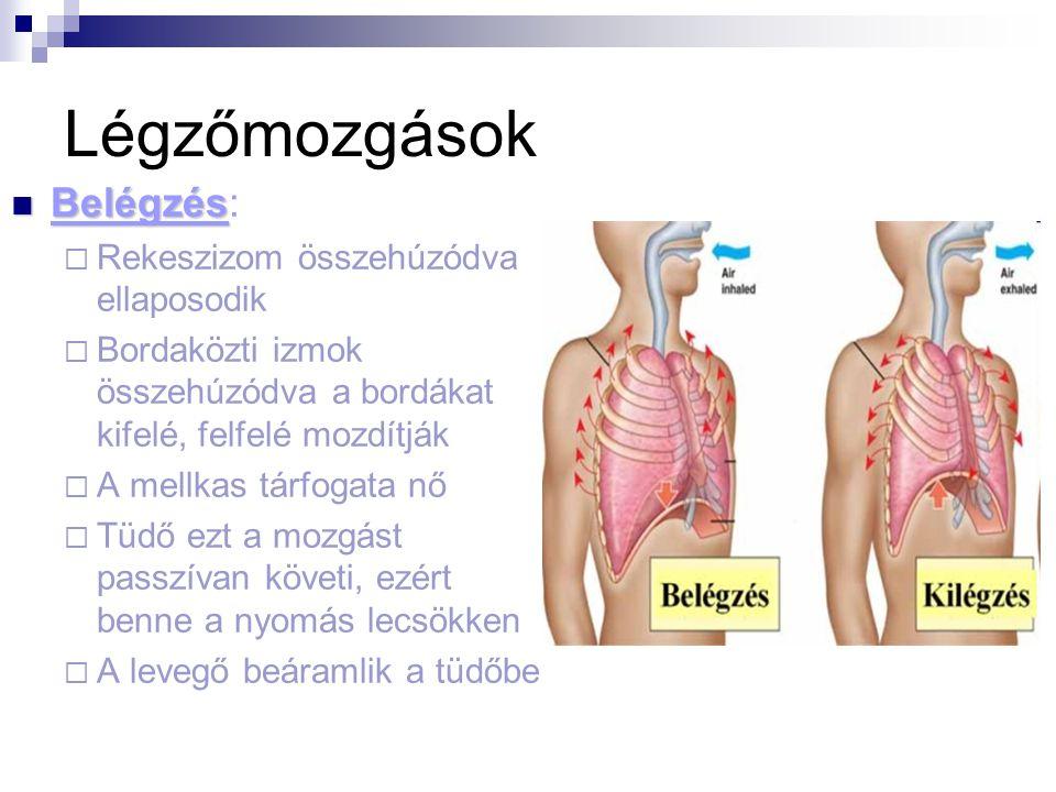 COPD 4 oka, 3 tünete és kezelése légzőtornával [teljes útmutató]