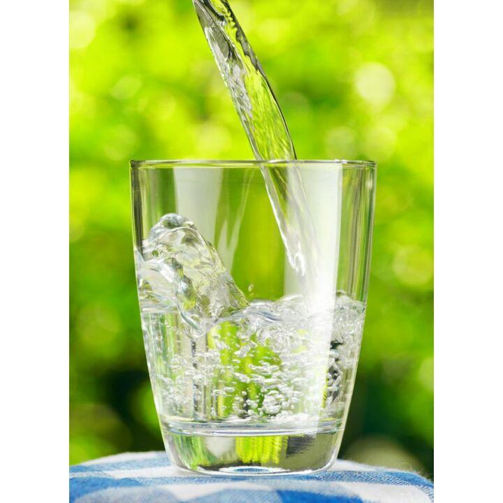 Víz, az élet motorja