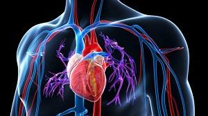 magas vérnyomás osteochondrosis alternatív kezeléssel