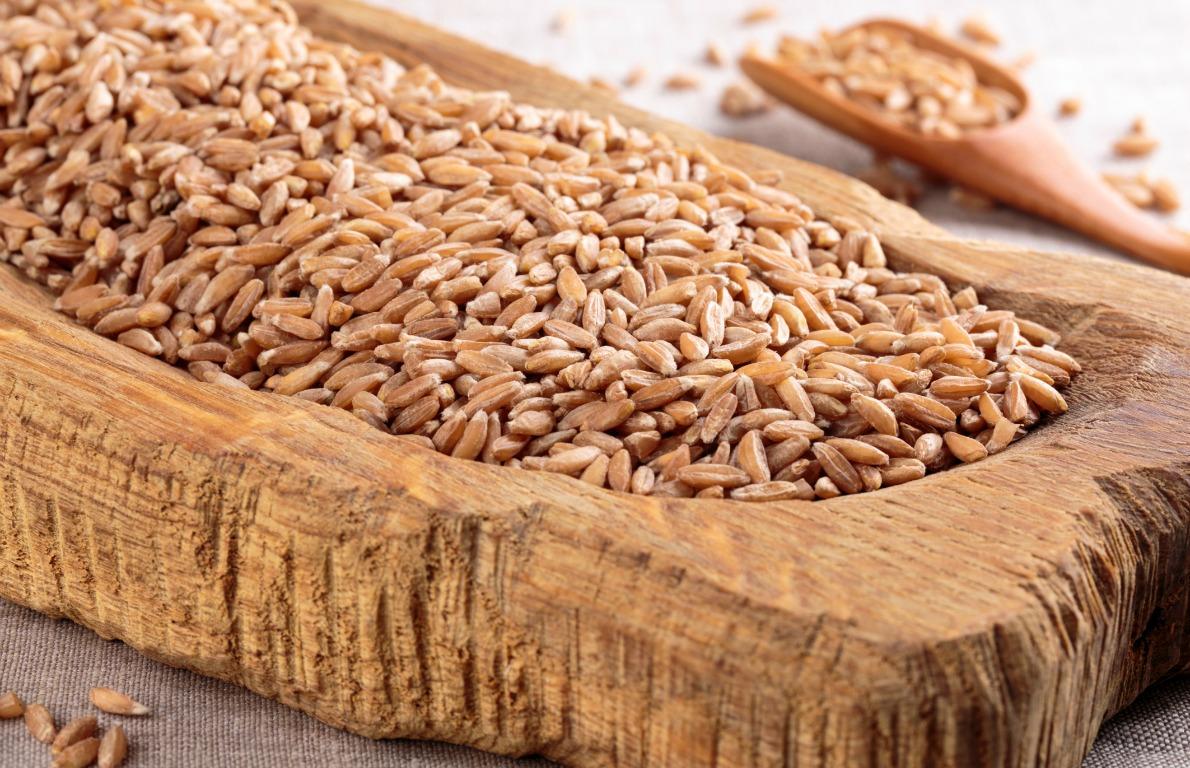milyen gabonafélék fogyaszthatók magas vérnyomás esetén röntgen magas vérnyomás esetén
