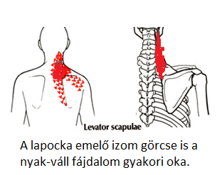 csigolya artéria magas vérnyomás