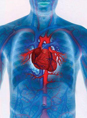 hogyan lehet megtisztítani a magas vérnyomású ereket magas vérnyomás műtéti kezelés