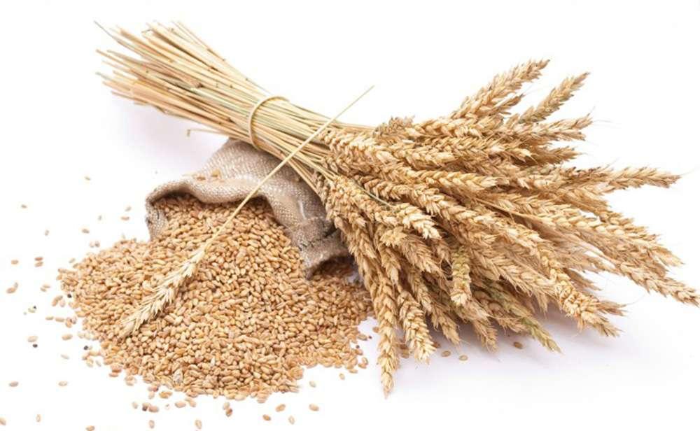 milyen gabonafélék fogyaszthatók magas vérnyomás esetén vizelethajtó magas vérnyomás ellen népi gyógymódokkal