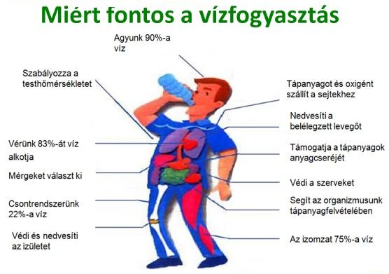 2 liter vizet magas vérnyomás esetén diéta 2-es típusú cukorbetegség és magas vérnyomás esetén