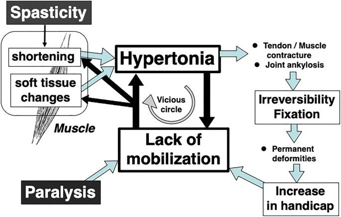 magas vérnyomás elleni gyógyszerek a szív számára a magas vérnyomás a szív vagy az erek betegsége